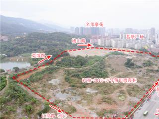 PS拍-2015-17号莆田西霞林地块