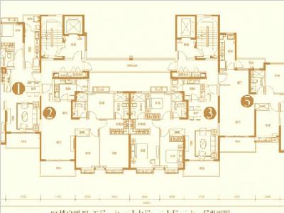 高层8#10#楼户型图