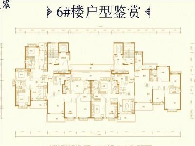 高层6#楼户型图