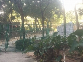 深圳一居民楼里建警务室 业主投诉拆墙毁路还破坏绿化