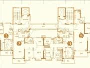 高层1#楼户型图