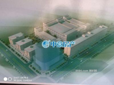 黃石东井街工业区 厂房 占地面积40亩 36000平米 总价8000万-莆田二手房