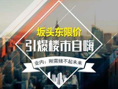 坂頭東1.6萬/㎡引爆樓市自嗨 業內:剛需賭不起未來