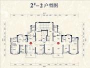2#楼03、05户型147㎡四房