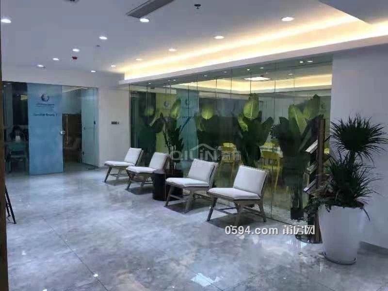 荔园小区 电梯房 办公室出租 家具家电齐全 采光好-室内图