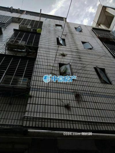 嘉新商業城  兩證齊全 南北通透 整幢樓 面積246平方總價246萬-莆田二手房