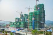 2019年3月工程进度