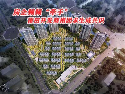 """土地市场""""限价"""" 莆田品牌开发商抱团求生成共识?"""
