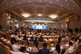 """三棵树:239.85亿元位列""""2019中国最具价值品牌""""涂料类第一"""