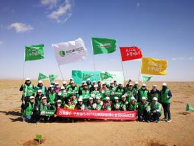 捐赠百万棵梭梭,三棵树携手支付宝蚂蚁森林探索互联网新