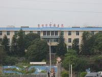 市肿瘤医院