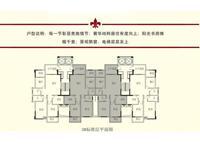 3#楼标准层平面图