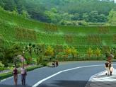 边坡绿化效果图