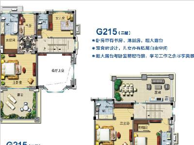 G215-S