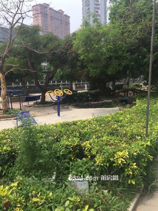 涵江商業城服裝批發城汽車站旁河濱花園