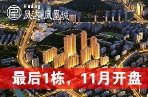 凤达凤凰城
