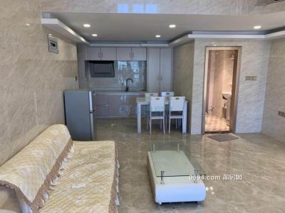 财富中心 两室一厅 商住 高层 精装 好果的房 -莆田租房