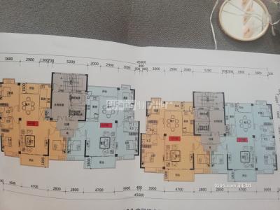 白菜价 黄霞安置房133平南北西四房两厅免过户费仅售60万-莆田二手房