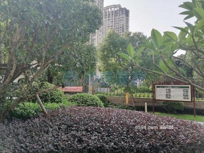 左岸藍灣單身公寓租1800-莆田租房